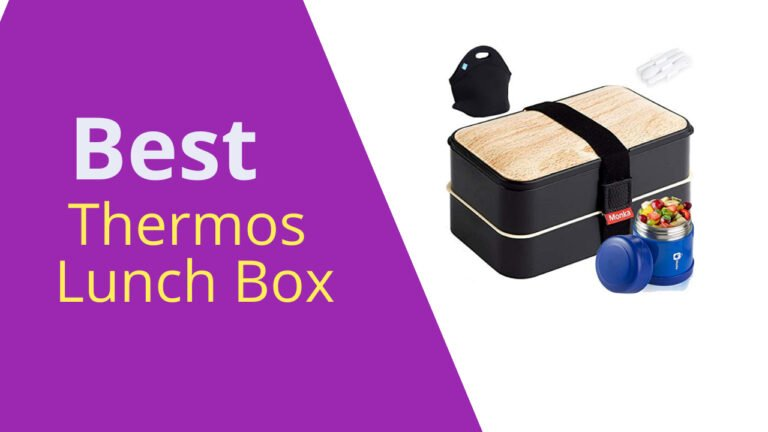 Best Thermos Lunch Box